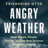 Angry Weather - book cover